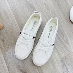 Giày sneaker thể thao nữ buộc dây TRƠN ĐEN ĐỎ phong cách hàn quốc màu đen, trắng size 36 đến 40 V179