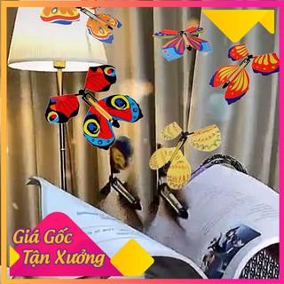 Mô hình bướm bay làm ảo thuật vui nhộn, Bươm bướm bay đồ chơi kẹp sách làm ảo thuật quà tặng bất ngờ cho bé - 9914699 thumbnail