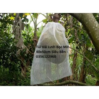 30 Túi Vải Không Dệt Bọc Mít kích thước 40x50cm Siêu Bền -Chống Ruồi, Chim, Côn Trùng Hút Chích, Chịu Nắng M - 30mit4050 thumbnail