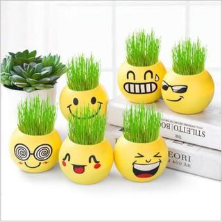 Chậu cây mini để bàn làm việc, hình mặt cười trang trí văn phòng - Sku2929 thumbnail