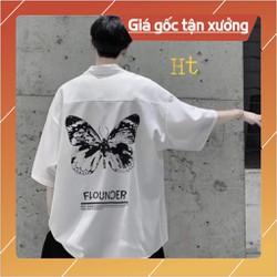 Áo sơ mi bướm FLO ngắn tay HT12