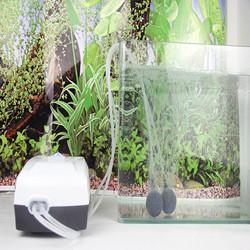 Máy thổi oxy tích điện 2 vòi  ĐỀ PHÒNG CÚP ĐIỆN hiệu JEBO 9950 thích hợp cho hồ cá cảnh, hồ thủy sinh và đi câu cá, vui lòng xem phần mô tả sản phẩm