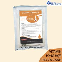 Vitamin tổng hợp dành cho cá cảnh, cá koi, cá rồng, cá vàng, cá bảy màu 100gr Tăng đề kháng, bổ sung Vitamin cho cá cảnh ACPharno