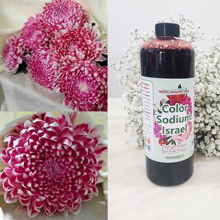 Nước Màu Nhuộm Hoa Tươi (Chai 1 Lít) Công Nghệ Israel giúp đổi màu hoa cắt cành thành 10 màu tại Chợ Hoa, Shop hoa và tại nhà - 1 chai màu nhuộm thumbnail