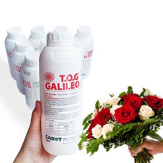 NƯỚC CẮM HOA HỒNG LÂU TÀN (1 LÍT TOG) nhập khẩu ISAREL dành cho Nhà Vườn Trồng Hoa Grower bảo quản hoa - 1 lít TOG gaileo thumbnail