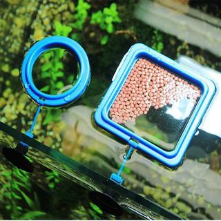 Vòng giữ thức ăn nổi cho cá cảnh - Vòng giữ thức ăn thủy sinh - BCPKPhuKien_VongNoiChoCaAn thumbnail