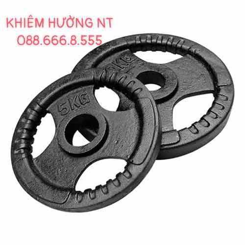 Tạ Đĩa miếng sắt tập Gym giá rẻ(1kg-10kg)