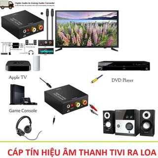Bộ chuyển đổi âm thanh từ tivi sang loa amly loại tốt cao cáp hàng chinh hãng cho âm thanh to rõ lọc âm hay hơn - a0100 thumbnail